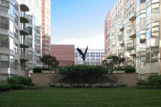 Luxury Apartment Rentals